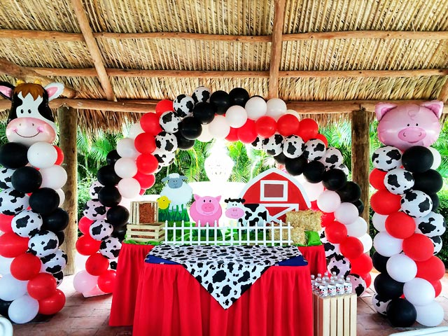 Farm_Party_Decoration