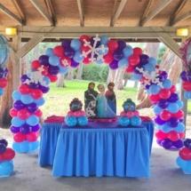 frozen-3-Party-Decorations